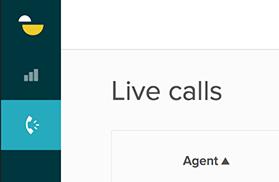Zendesk_Talk_Live_Calls.png